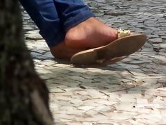 trees feet